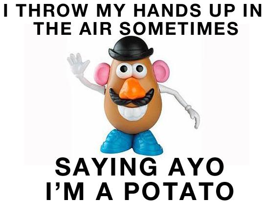 im-a-potato-27310-1295147934-72
